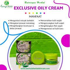 Batrisyia Exclusive Oily Day Night Cream