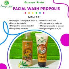 Facial Wash Propolis With VCO Batrisyia