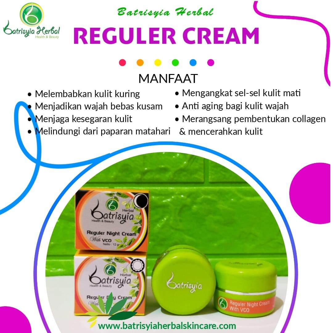 Batrisyia Reguler Day Night Cream
