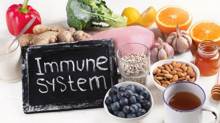 makanan untuk sistem imun kamu